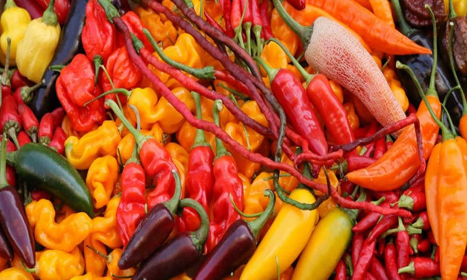 Al die verschillende soorten pepers. Wat is nou het verschil?